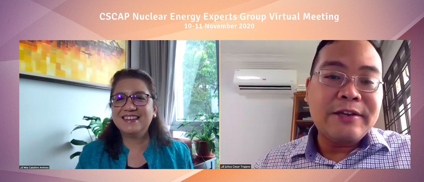 CSCAP Nuclear Energy Experts Group Virtual Meeting, 10-11 November 2020