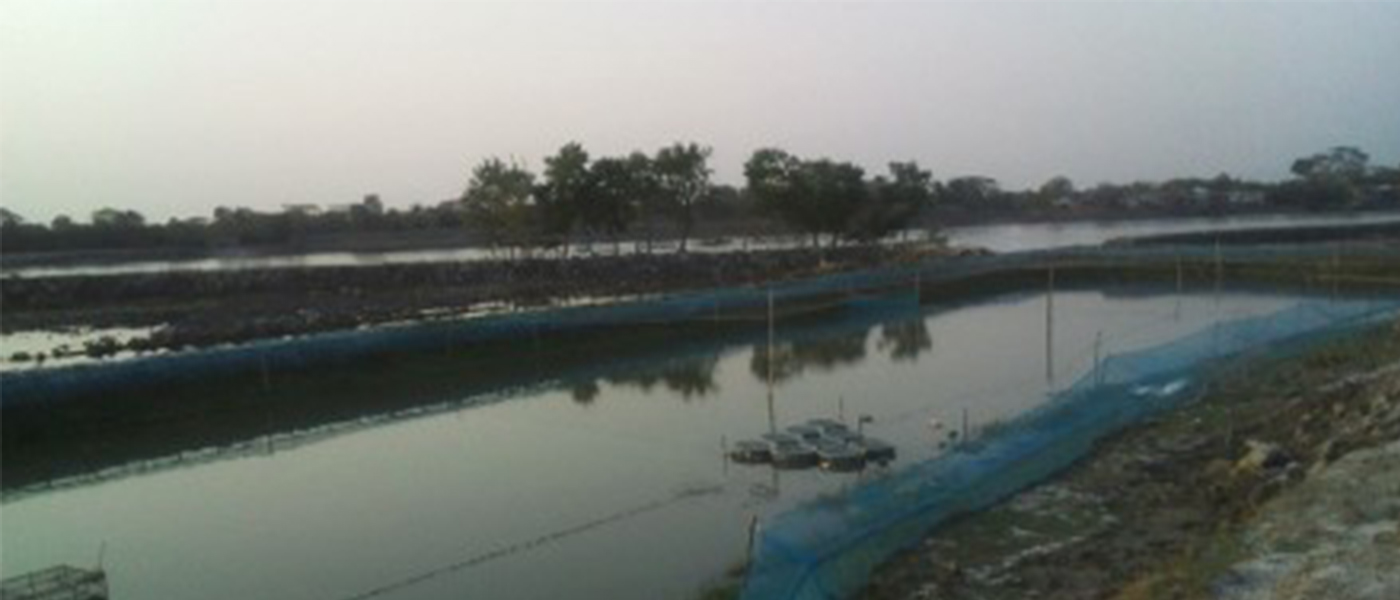 Environmental change and migration in an agrarian society: The case of coastal Bangladesh